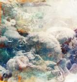 Corales II