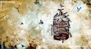 Aves y Jaula ( horizontal)