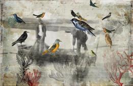 Pescadores con Aves