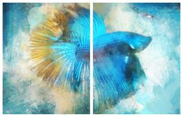 Díptico pez