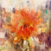Flor sobre espinas