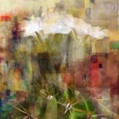 Flores de espino